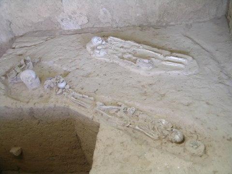 โครงกระดูกที่ถูกค้นพบ มีอายุราว 2,000 ปี